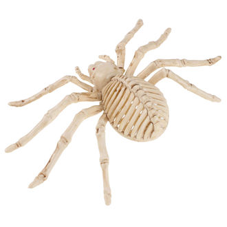 Decorazione SPIDER SKELETON