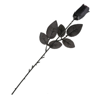 rosa nera - 19900