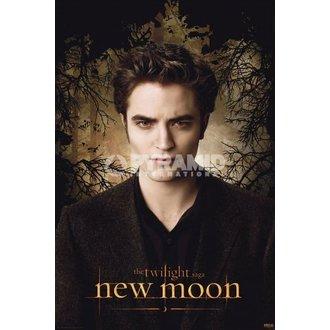 poster Twilight - New Moon (Edward Alberi) - PYRAMID POSTER, TWILIGHT