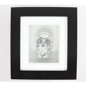 immagine Silver Skull In Telaio