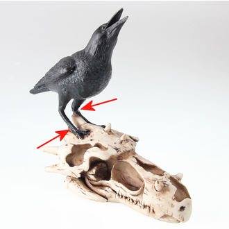 decorazione Cranio Di Corvax - NENOW - DANNEGGIATO, Nemesis now