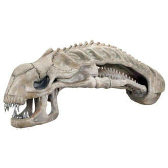 figurina Alieno - Aliens Replica Xenomorph Skull, Alien - Vetřelec