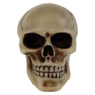 decorazione  Cranio Ingranaggio, NNM