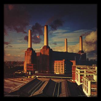 manifesto Pink Floyd - (&&string0&&) - PYRAMID POSTERS, PYRAMID POSTERS, Pink Floyd