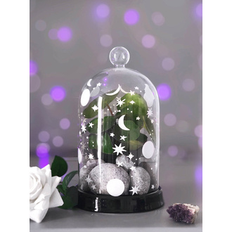 Decorazione (vaso per succulente) KILLSTAR - Empyrean Display Dome, KILLSTAR