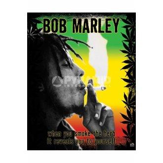 poster Bob Marley (Erba) - MPP50071, PYRAMID POSTERS, Bob Marley