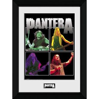 Poster (incorniciato) Pantera - GB posters, GB posters, Pantera