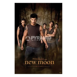 poster Twilight - New Moon (Wolf Pacchetto) (Twilight) - PP32065, TWILIGHT