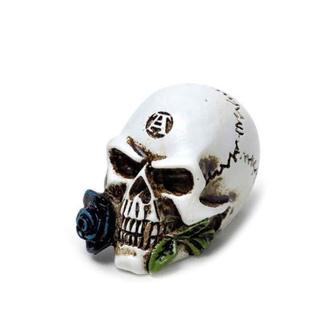 Decorazione ALCHEMY GOTHIC - Alchemist Skull, ALCHEMY GOTHIC