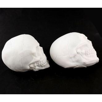 cranio ZOELIBAT - DANNEGGIATO, ZOELIBAT