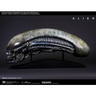 Statuetta Alien: Covenant- Xenomorph Head, NNM, Alien